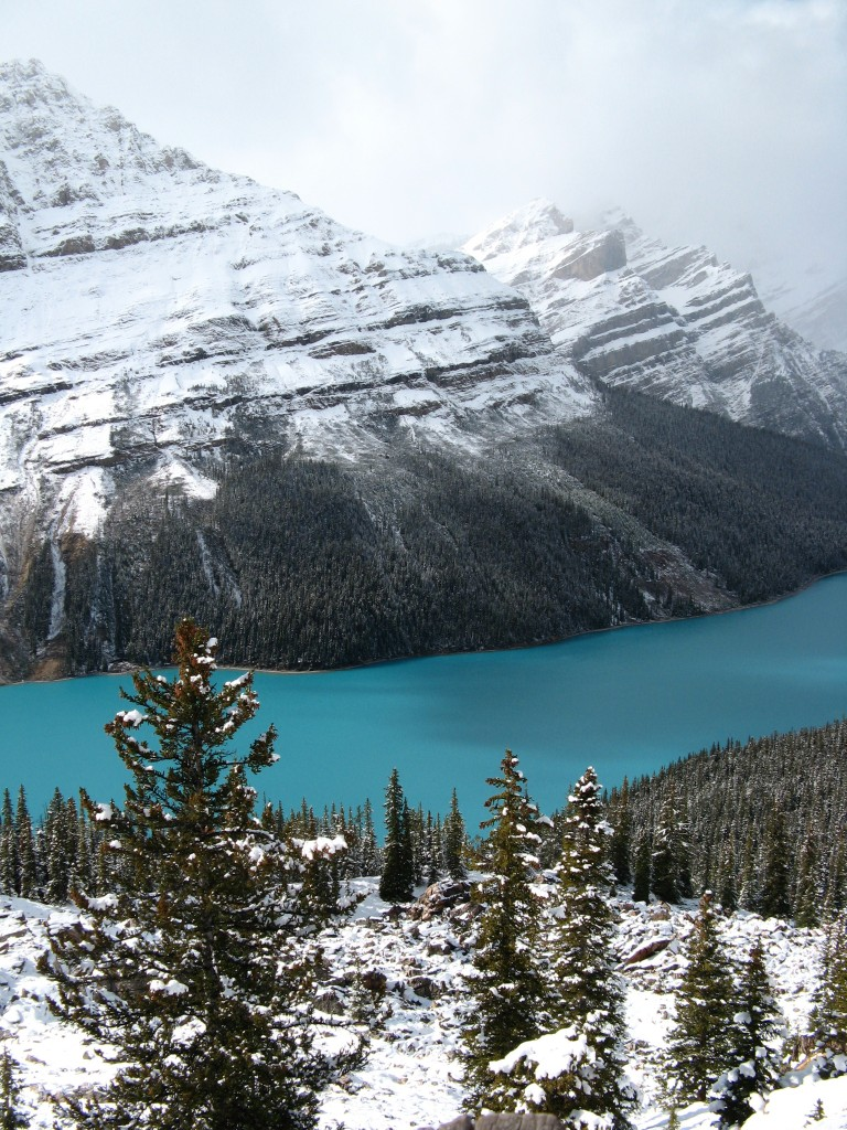Peyto Lake, Canadian Rockies (aka gringita, 2007)