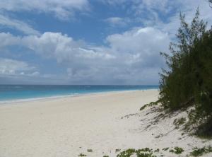 Elbow Beach, Bermuda (aka gringita, 2009)