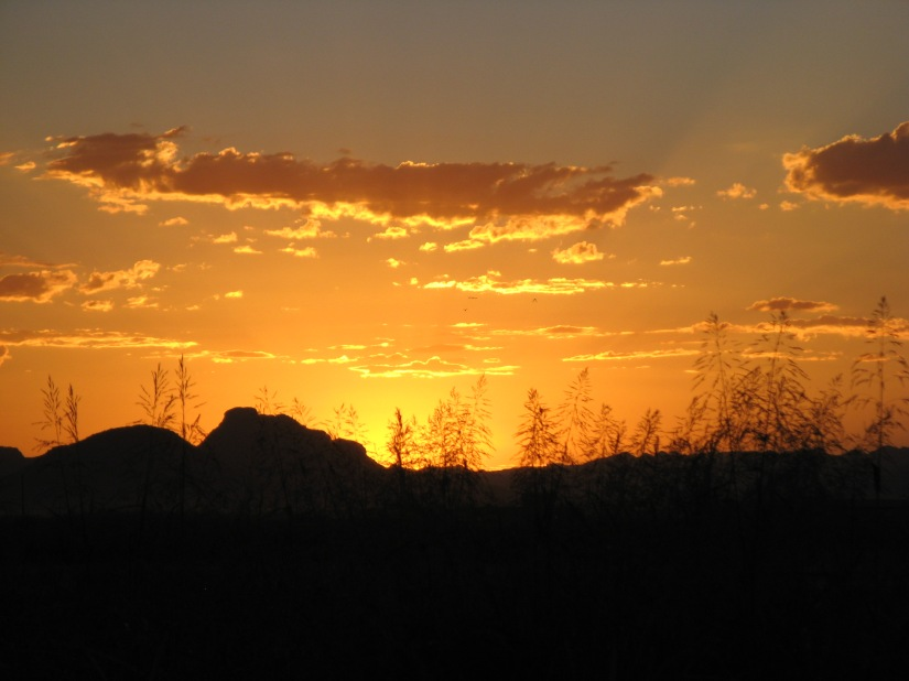 Scottsdate, AZ (aka gringita, 2010)